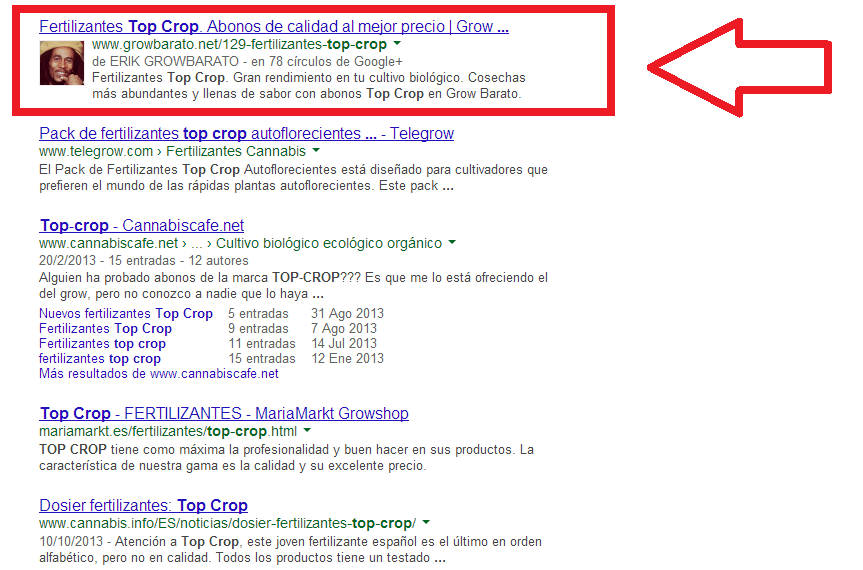 despues del experimento Google Authorship