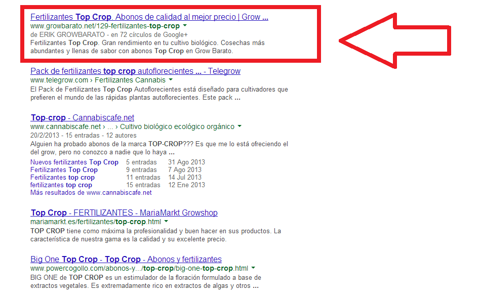 Antes del experimento Google Authorship